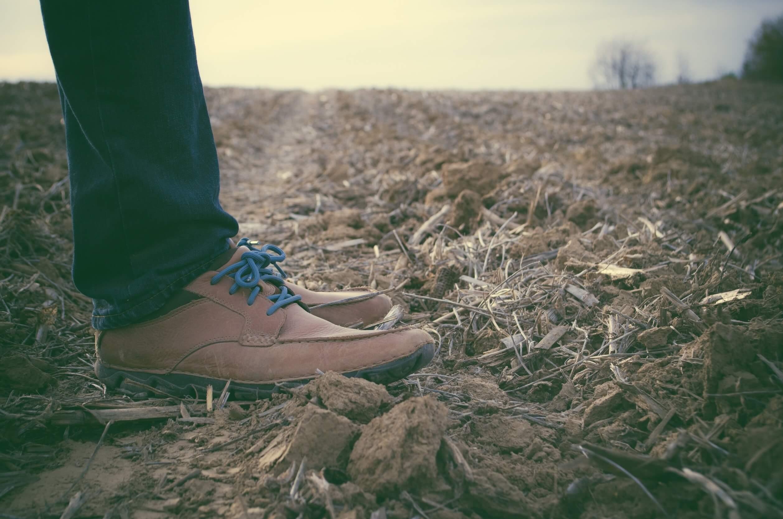 shoes-690518